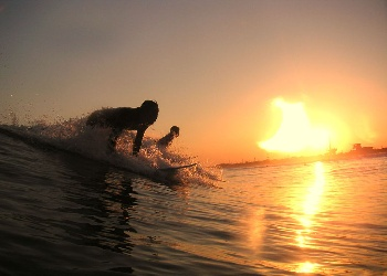 Surfing The Sunset Wallpaper__yvt2