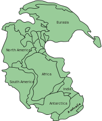200px-Pangaea_continents.svg